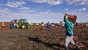 extension-reforme-des-terres-RSA