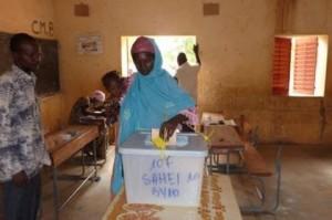 niger-vote
