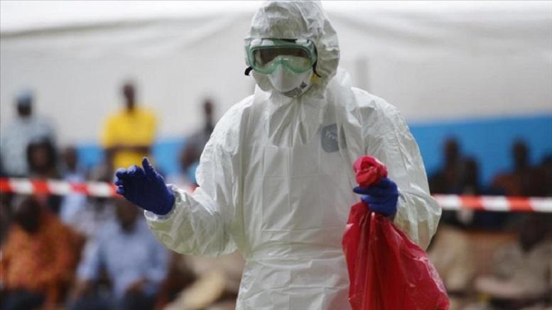 Un virus proche d'Ebola ravage les populations — Bénin