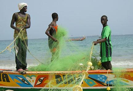 Gestion des pêcheries sénégalaises. Les communautés s'engagent