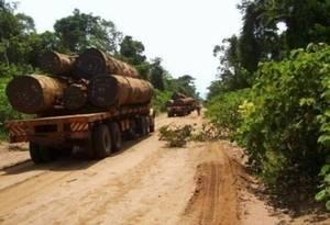 Congo Brazza Asia-Congo augmente sa production