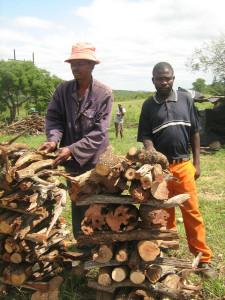 Malawi Importance du secteur forestier