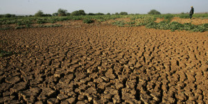 RTEmagicC_drought-24649_3236-small_01.jpg