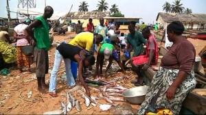 L'Afrique-de-l'Ouest-victime-de-la-pêche-pirate