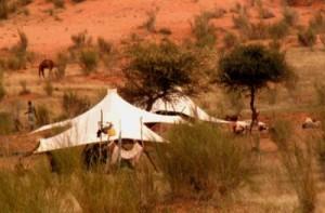 elevage-mauritanie