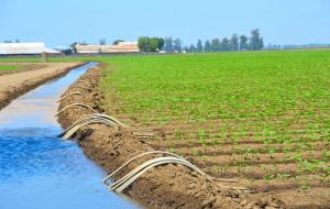 irrigation-maroc
