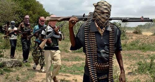 Défections dans les rangs de Boko Haram au sud-est du Niger