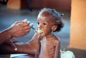famine-alarme-onu
